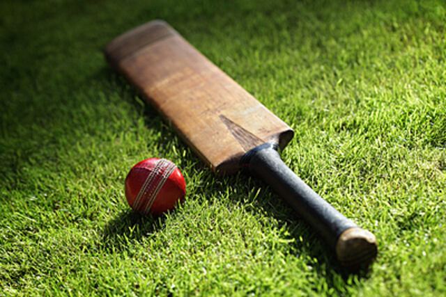 クリケットで使用するバットとボール
