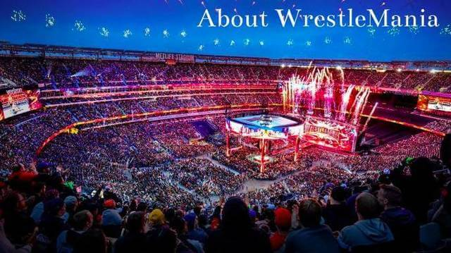 WWE最大級のイベントレッスルマニアの会場風景