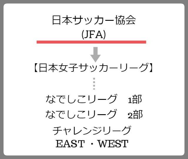 JFA組織図
